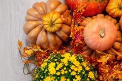 Autumn Pumpkin Thanksgiving Background - calabazas, hojas y flores anaranjadas Imágenes de archivo libres de regalías
