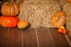 Autumn Pumpkin Thanksgiving Background - calabazas, hojas y flores anaranjadas sobre piso de madera Fotos de archivo