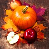 Autumn Pumpkin Thanksgiving Background con las calabazas anaranjadas, app Imagenes de archivo