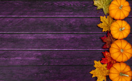 Autumn Pumpkin Thanksgiving Background Stock Image