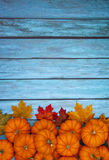 Autumn Pumpkin Thanksgiving Background Stock Images