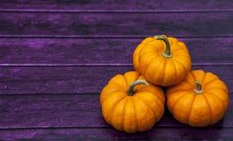 Autumn Pumpkin Thanksgiving Background Stock Photos