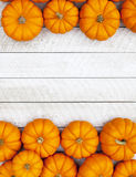 Autumn Pumpkin Thanksgiving Background Royalty Free Stock Photos