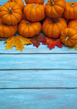 Autumn Pumpkin Thanksgiving Background Royalty Free Stock Photography