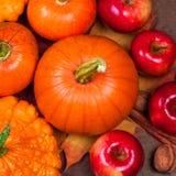 Autumn Pumpkin Thanksgiving Background mit orange Kürbisen, APP Stockbilder