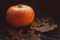 Autumn Pumpkin Thanksgiving Background - orange Kürbise über Holztisch Lizenzfreies Stockfoto