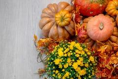 Autumn Pumpkin Thanksgiving Background - orange Kürbise, Blätter und Blumen Stockfotografie