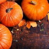 Autumn Pumpkin Thanksgiving Background - orange pumpkins over wo Royalty Free Stock Photos