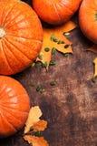 Autumn Pumpkin Thanksgiving Background - orange pumpkins over wo Stock Photography