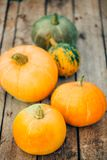 Autumn Pumpkin Thanksgiving Background - orange pumpor över wo royaltyfri foto