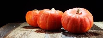 Autumn Pumpkin Thanksgiving Background - oranje pompoenen over ru stock foto