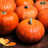 Autumn Pumpkin Thanksgiving Background - potirons oranges au-dessus d'OE Photo stock