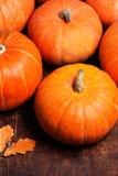 Autumn Pumpkin Thanksgiving Background - potirons oranges au-dessus d'OE Photos libres de droits