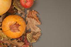 Autumn Pumpkin Thanksgiving Background - zucca arancio e mele rosse sopra le foglie di caduta sulla tavola grigia Copi lo spazio fotografie stock libere da diritti