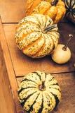 Autumn Pumpkin Thanksgiving Background - zucche arancio sopra fondo arrugginito fotografia stock