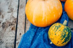 Autumn Pumpkin Thanksgiving Background - zucche arancio sopra il wo immagine stock