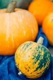 Autumn Pumpkin Thanksgiving Background - zucche arancio sopra il wo fotografia stock libera da diritti
