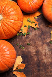 Autumn Pumpkin Thanksgiving Background - zucche arancio sopra il wo Fotografia Stock