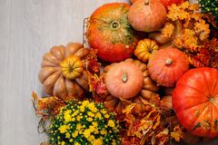 Autumn Pumpkin Thanksgiving Background - zucche, foglie e fiori arancio Immagine Stock Libera da Diritti