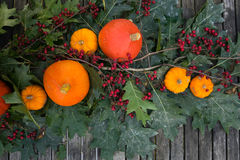 Autumn Pumpkin und Berry Table Decor Backgrouns Stockfotos