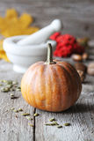 Autumn pumpkin on wooden board. 