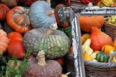 Autumn - Pumpkins stock photography