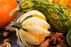 Autumn Pumpkins Immagine Stock Libera da Diritti