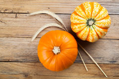 Autumn Pumpkins Foto de Stock Royalty Free
