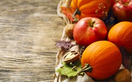 Autumn pumpkins and apples with fall leaves on wooden background Stock Photos