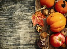 Autumn pumpkins and apples with fall leaves on wooden background Royalty Free Stock Images