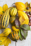 Autumn Pumpkins Assortment con Autumn Leaves e le castagne Immagini Stock