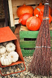 Autumn pumpkins in a box Royalty Free Stock Images