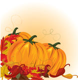 Autumn pumpkins and colorful leaves Royalty Free Stock Images