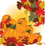 Autumn pumpkins and colorful leaves Stock Images