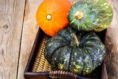 Autumn Pumpkins de diversos colores para el día de la acción de gracias en viejo Foto de archivo libre de regalías