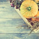 Autumn pumpkins and dry flowers flat lay Stock Photography