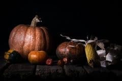 Autumn Pumpkins e milho em uma superfície de madeira rústica Thanksgivin imagem de stock