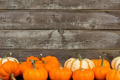 Autumn pumpkins and gourds against old wood background Stock Photos