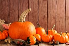 Autumn pumpkins and gourds arranged on wood. Autumn pumpkin and gourd arrangement on a wooden background Stock Photography