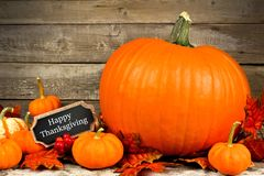 Autumn pumpkins with Happy Thanksgiving chalkboard tag Stock Image