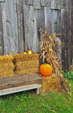 Autumn pumpkins on hay bales Stock Images