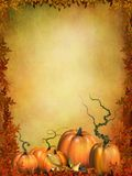 Autumn pumpkins with leaves Stock Images