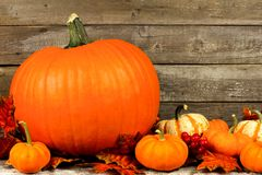 Autumn pumpkins and leaves with rustic wood background Royalty Free Stock Photography