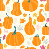 Autumn pumpkins and leaves Stock Image