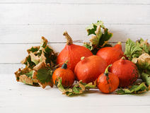 Autumn pumpkins and leaves on a white wooden background. Stock Photography