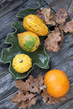 Autumn pumpkins with leaves on wooden board Stock Image