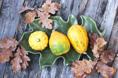 Autumn pumpkins with leaves on wooden board Royalty Free Stock Photo