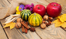 Autumn pumpkins and nuts Royalty Free Stock Photos