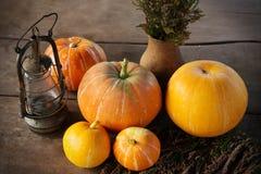 Autumn Pumpkins - orange pumpkins on wooden table Royalty Free Stock Photography