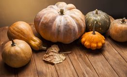 Autumn pumpkins and other fruits and vegetables on wooden thanks. Autumn pumpkins and other fruits and vegetables on a wooden thanksgiving table royalty free stock photo